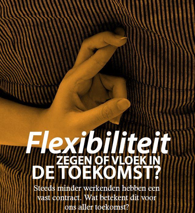 Artikel Giel Schikhof: Flexibiliteit zegen of vloek?